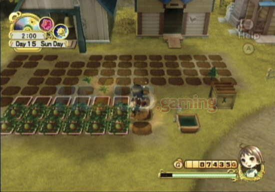 Harvest Moon Tree of Tranquility (USA) WII ISO Download - Nitroblog