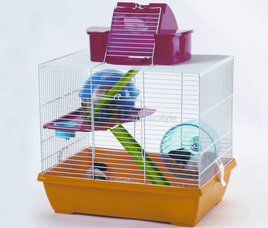 Hamsters in the Savic NoddyDouble Hamster Cage with Penthouse