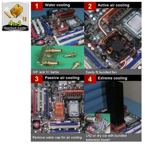 4 in 1 Quantum Cooler